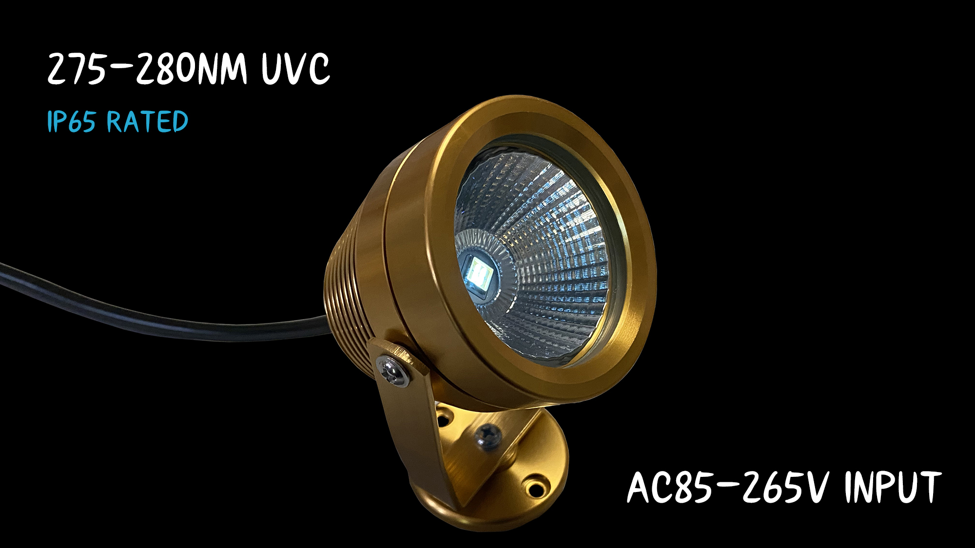 Meet Our Medical UVC Disinfection Lighting Stars!